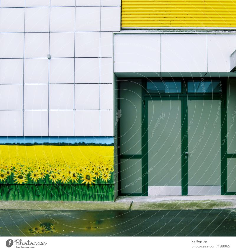 Plant Flower House (Residential Structure) Environment Yellow Meadow Facade Field Decoration Painting and drawing (object) Sunflower Foliage plant Agricultural crop Wild plant Culture Art