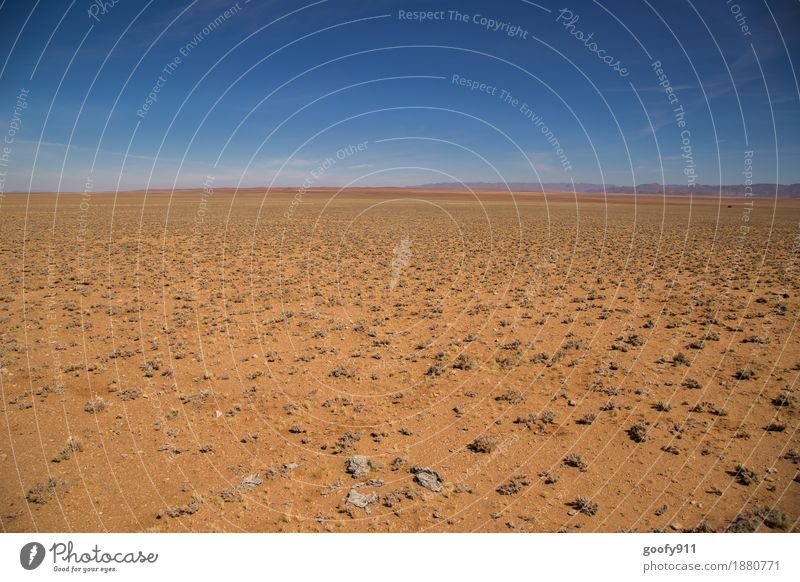 The vastness of Namibia Vacation & Travel Trip Adventure Far-off places Freedom Safari Summer Sun Environment Nature Landscape Earth Sand Air Sky Cloudless sky