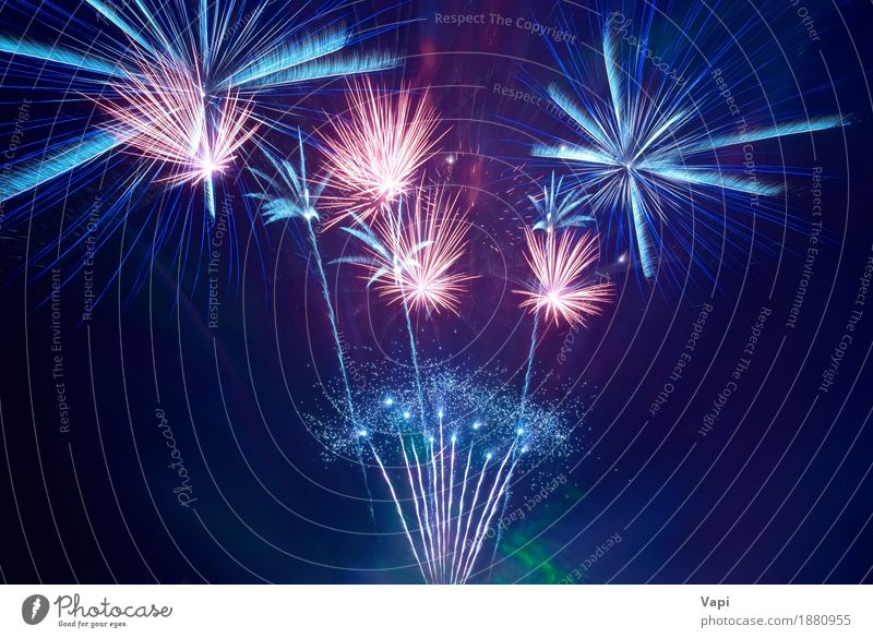 Beautiful fireworks Sky Blue Christmas & Advent Colour White Red Joy Dark Black Yellow Freedom Feasts & Celebrations Party Orange Pink Bright