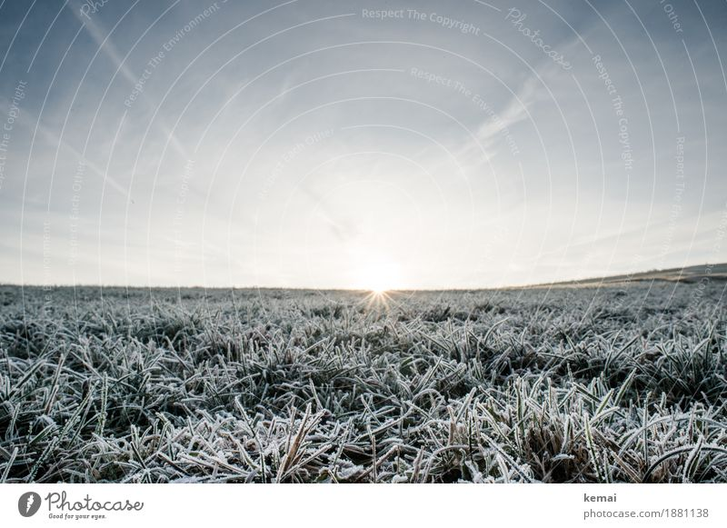 Sky Nature Plant Beautiful Sun Landscape Calm Far-off places Winter Environment Cold Meadow Grass Freedom Moody Horizon