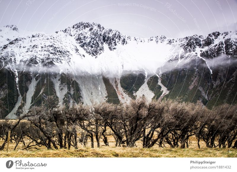 Mount Cook National Park Nature Landscape Clouds Autumn Climate Bad weather Fog Snow Bushes Wild plant Mountain Snowcapped peak Vacation & Travel Gigantic Idyll