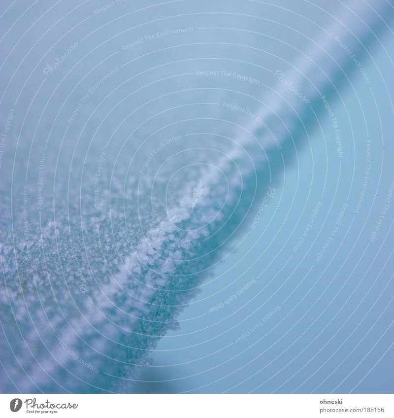 Cool Winter Climate Weather Ice Frost Pane Glass Cold Blue Subdued colour Exterior shot Close-up Abstract Pattern Structures and shapes Copy Space top Blur