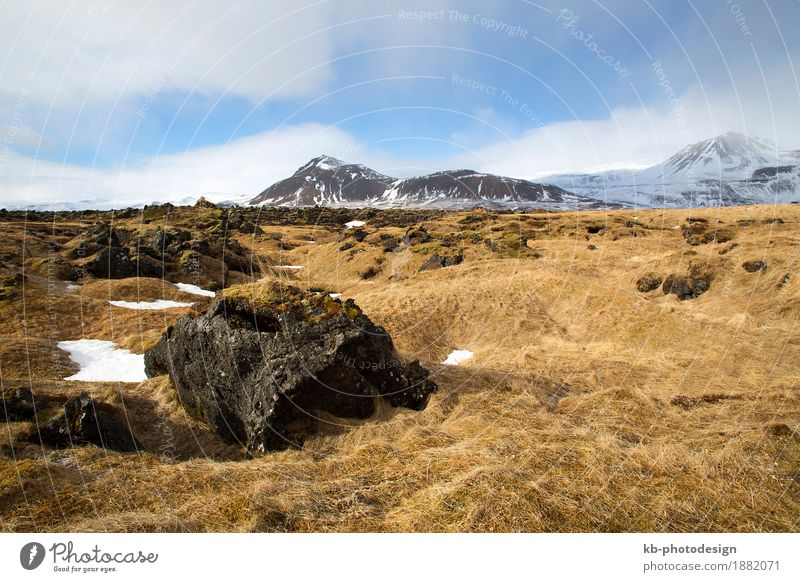 Vacation & Travel Landscape Far-off places Winter Mountain Tourism Adventure Iceland Winter vacation Snæfellsnes