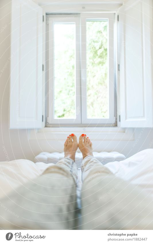 Human being Woman White Relaxation Calm Window Adults Legs Feminine Feet Bright Flat (apartment) Living or residing Contentment Lie Well-being