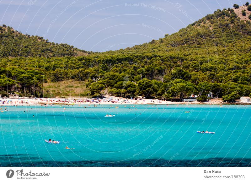 Beautiful Sun Ocean Summer Beach Forest Relaxation Waves Swimming & Bathing Island Majorca Water Wellness Hill Bay Turquoise
