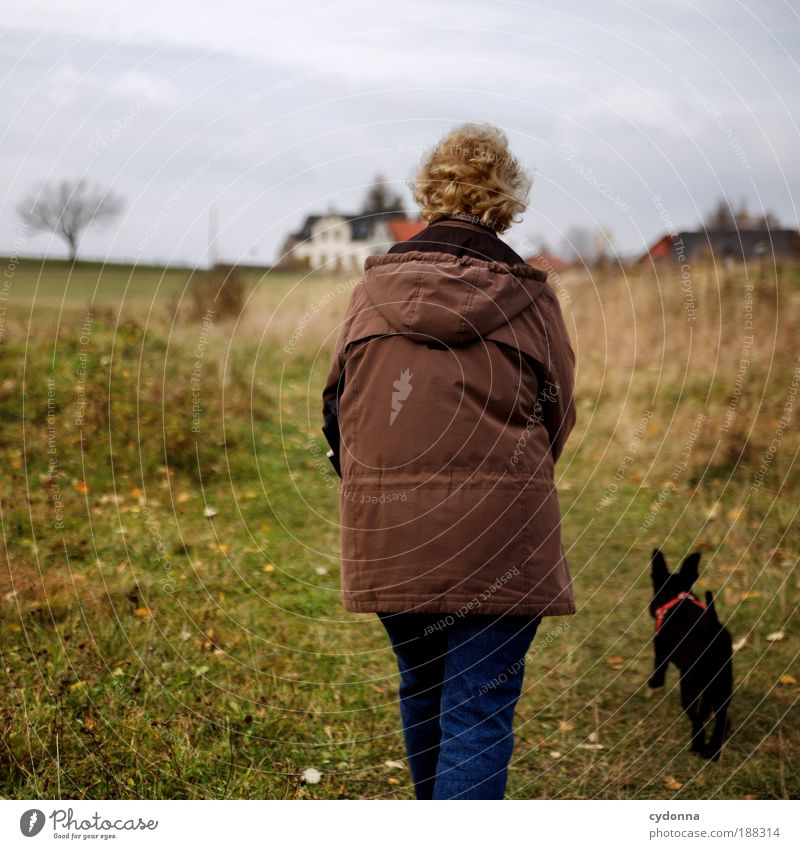 stroll Life Well-being Relaxation Calm Hiking Human being Female senior Woman Senior citizen Environment Nature Landscape Autumn Meadow Dog Movement Freedom