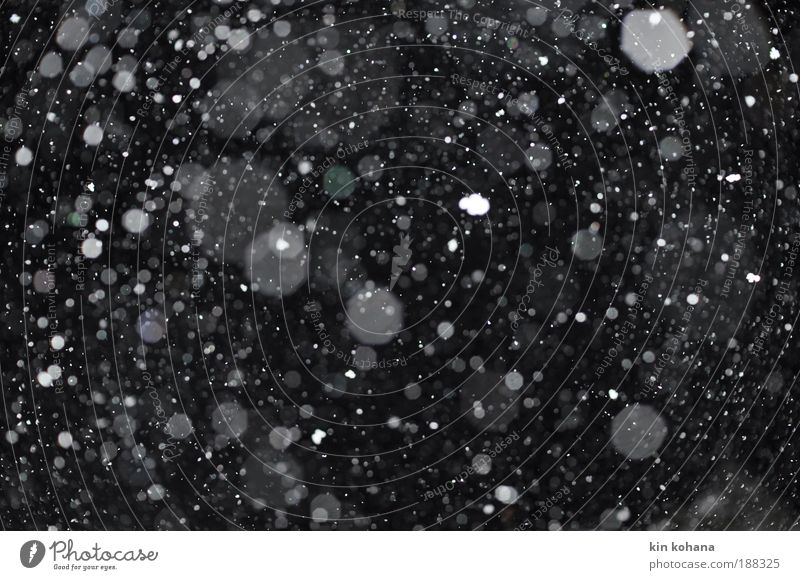 blown away (fifty small flakes) Sky Night sky Winter Ice Frost Snow Snowfall Crystal Observe Touch To fall Dream Cold Black White Loneliness Pure
