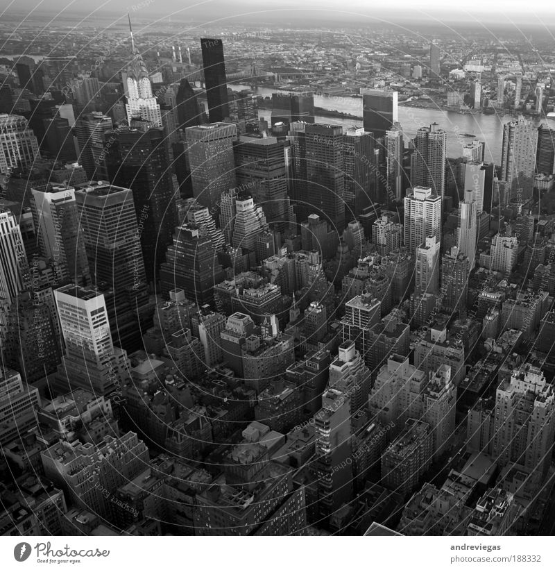 New York City Black & white photo Bird's-eye view Crazy Living or residing Skyline Landmark Downtown Overpopulated