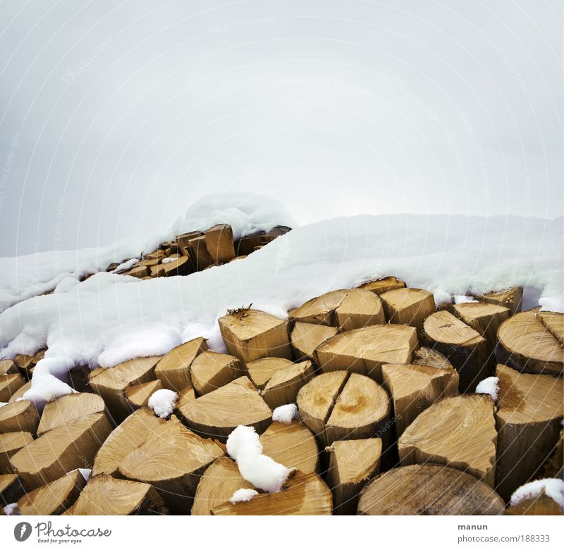 firewood Well-being Woodcutter Lumberjack Agriculture Forestry Renewable energy Environment Nature Winter Ice Frost Snow Firewood Sustainability Natural Energy