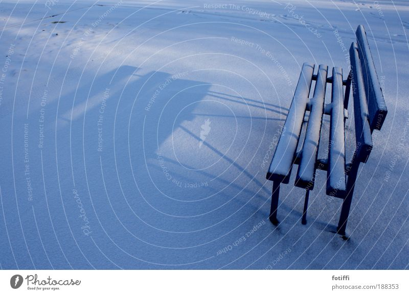 Blue White Winter Calm Loneliness Far-off places Relaxation Snow Wood Line Contentment Free Empty Break Bench Meditative