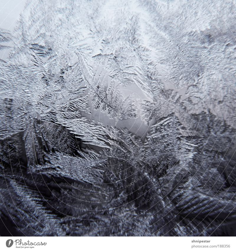 Nature Water White Blue Winter Calm Cold Snow Window Gray Snowfall Ice Room Together Contrast Cool (slang)