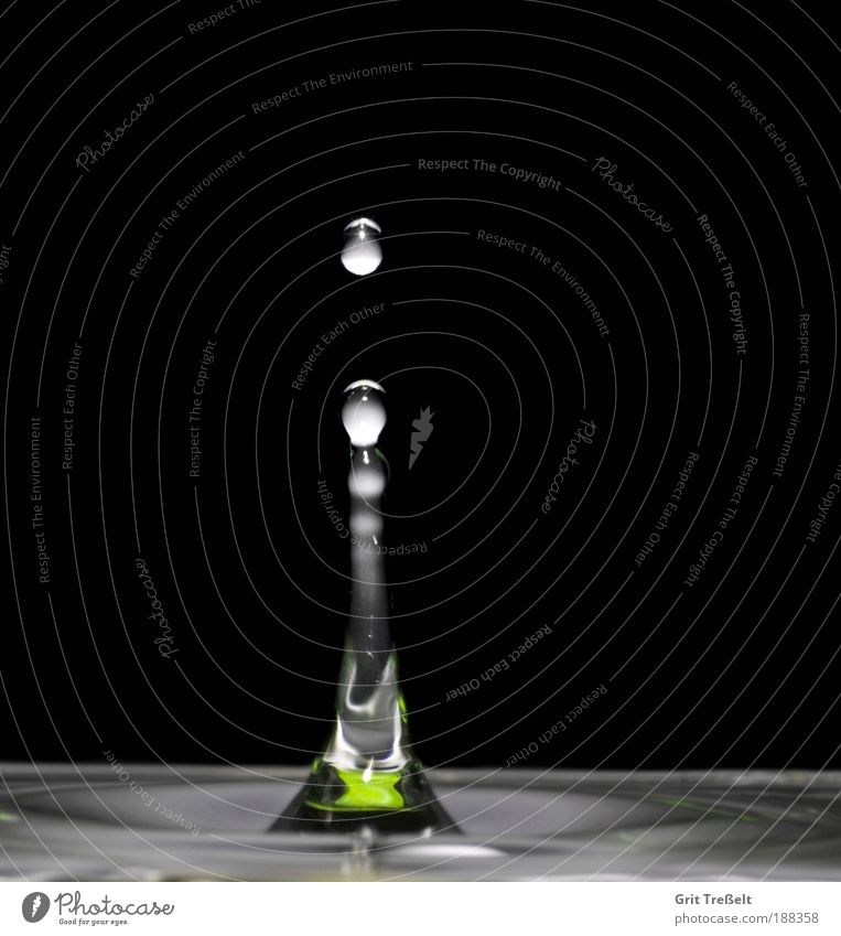 Nature Water White Green Calm Black Colour Gray Rain Drops of water Wet Success Perspective Uniqueness Fluid
