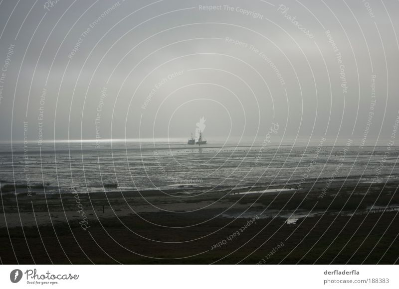 Water Sky Sun Ocean Winter Beach Clouds Loneliness Autumn Emotions Movement Watercraft Coast Fog Wind Horizon