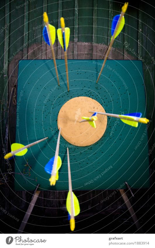 Hit the target Target Strike Arrow Archery Quality Precision Performance Success Effort Bow Ambitious Impact Reach Accuracy Talented Focal point Focus on