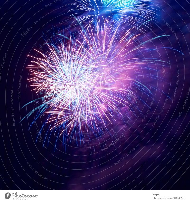 Fireworks on the black sky Sky Blue Christmas & Advent Colour White Red Joy Dark Black Yellow Freedom Feasts & Celebrations Party Pink Bright Violet