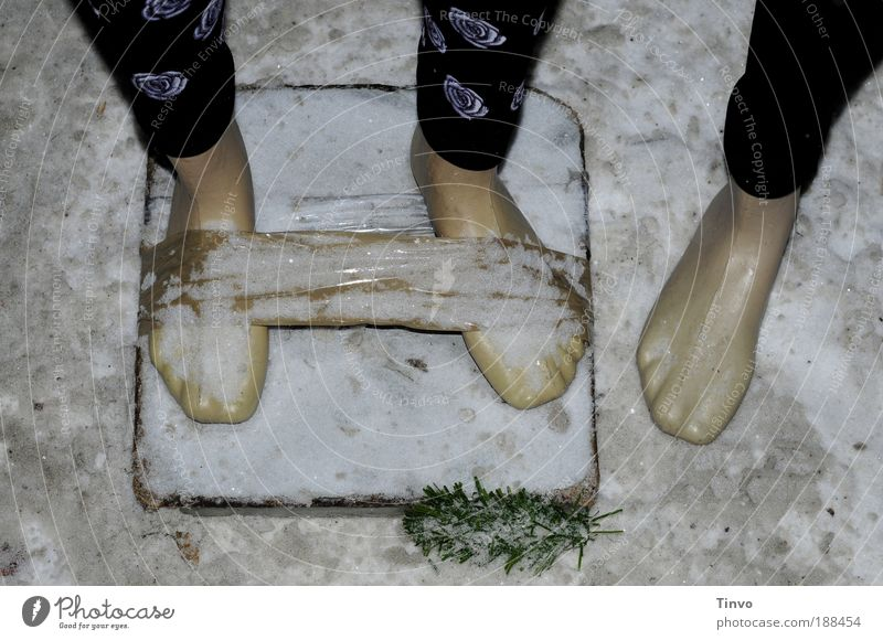 Winter Black Cold Snow Feet Ice Clothing Frost Human being Exceptional Plastic Packaging Elements Barefoot Package