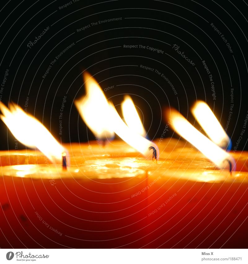 Dark Bright Feasts & Celebrations Wind Fire Candle Colour photo Decoration Desire Illuminate Fragrance Blow Positive Flame Candlelight