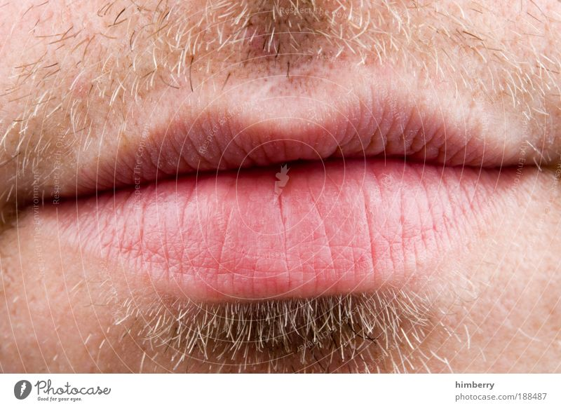 read my lips Lifestyle Style Hair and hairstyles Skin Human being Young man Youth (Young adults) Man Adults Mouth Lips 1 Kissing Freedom of speech