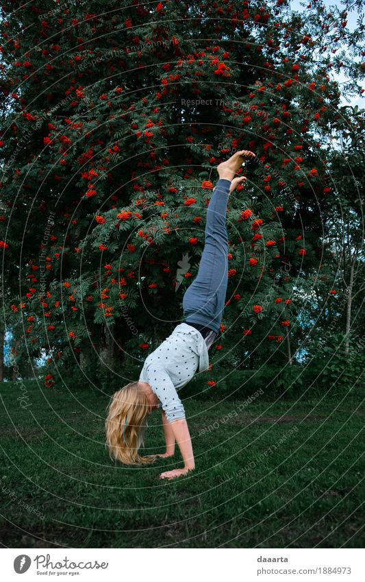on hands Nature Tree Joy Life Lifestyle Feminine Style Playing Garden Freedom Feasts & Celebrations Wild Leisure and hobbies Park Trip Happiness