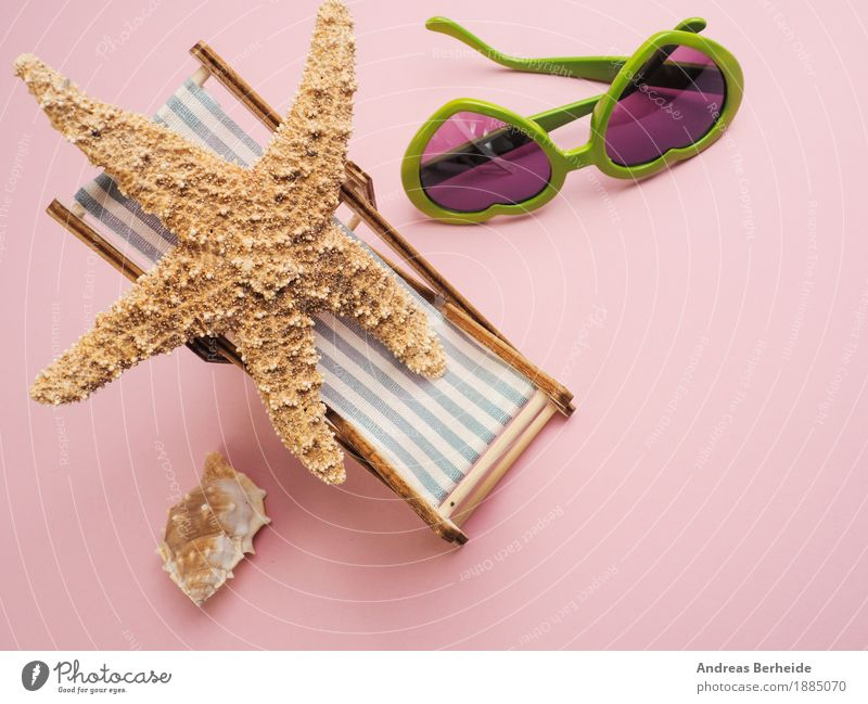 I need a holiday ... Vacation & Travel Summer Beach Relaxation Joy concept starfish view traveling vacation sea sunglasses tropical leisure deckchair Mussel