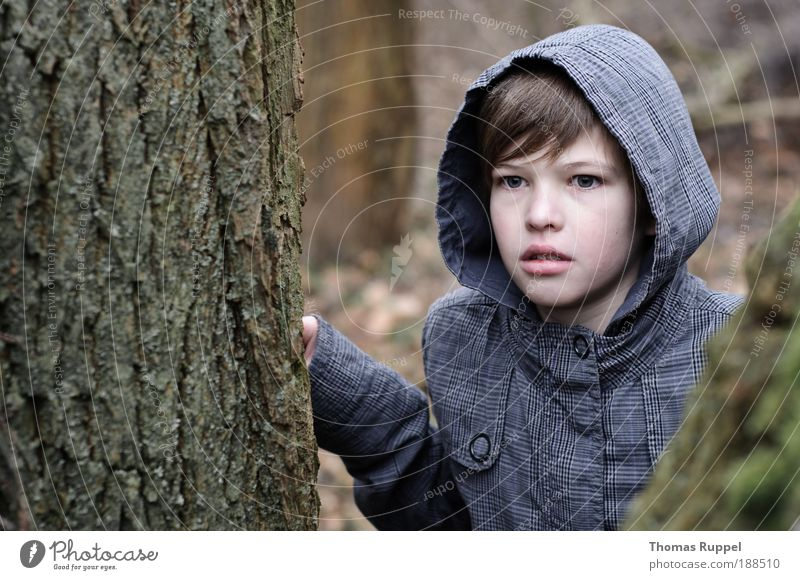 Human being Child Nature Youth (Young adults) Tree Plant Loneliness Forest Boy (child) Infancy Masculine Adventure Dangerous Threat Observe