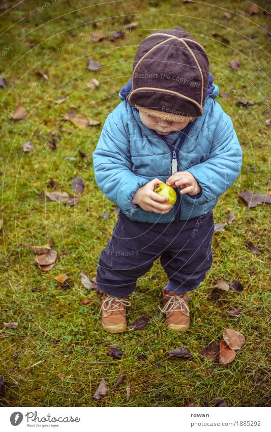 apple Fruit Apple Human being Child Toddler Boy (child) Family & Relations Infancy 1 Autumn Blue Cap Discover Eating Healthy Eating Stand Small Delicious