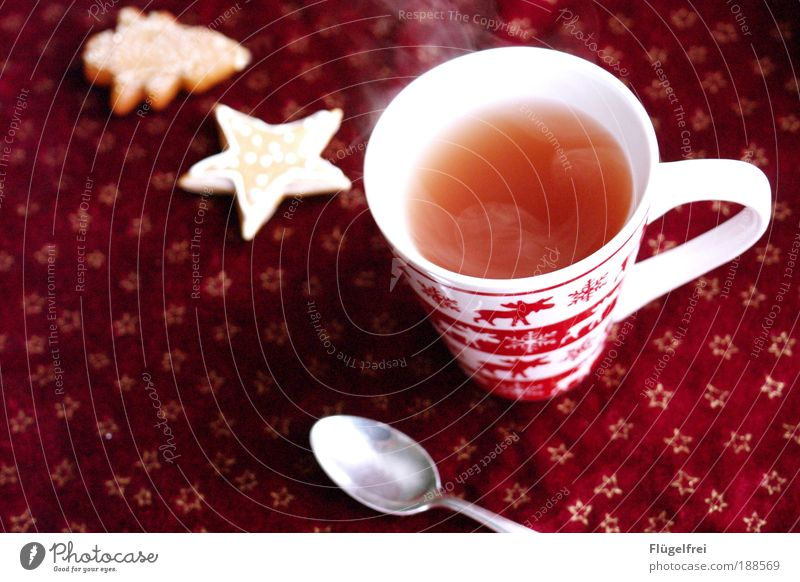The right thing for the weather Beverage Tea Drinking Cozy Relaxation Elk Cookie Stars Fir tree Steam Cutlery Spoon Winter To enjoy Hot drink Cup Red Go up