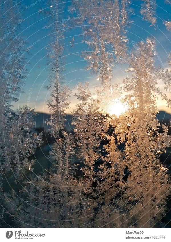 Ice vs. Sun Nature Elements Sky Cloudless sky Horizon Sunrise Sunset Sunlight Winter Beautiful weather Frost Hill Alps Mountain Ice crystal Crystal Looking