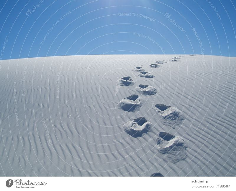 Traces in the white sand Nature Landscape Sand Summer Beautiful weather Hill Desert White Sands USA Americas Overpopulated Deserted Looking Blue Loneliness