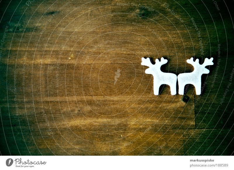 Christmas & Advent White Calm Interior design Style Art Feasts & Celebrations Brown Design Room Illuminate Decoration Elegant Soft Sign Trashy