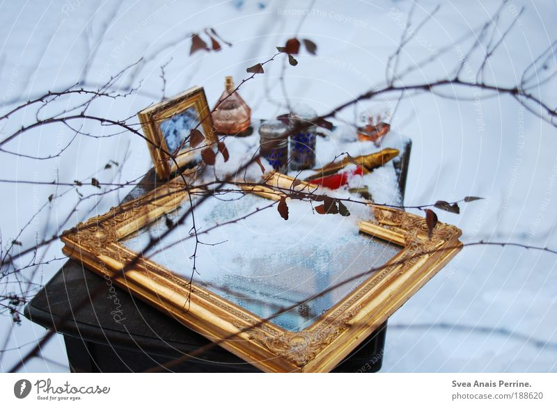 You're ice... ice cold. Garden Redecorate Arrange Table Mirror Environment Winter Ice Frost Snow Tree Leaf Tin Wood Gold Drop Freeze Faded Elegant Fresh