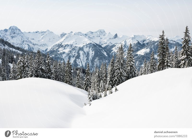 Nature Vacation & Travel White Landscape Relaxation Loneliness Calm Far-off places Winter Mountain Environment Cold Snow Freedom Bright Hiking