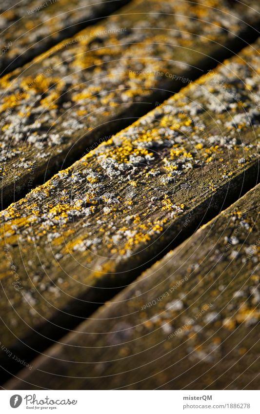 Sea bottom. Art Esthetic Ground Wooden floor Gray (horse) Decompose Sea water Baltic Sea Wooden board Decent Colour photo Multicoloured Exterior shot Close-up