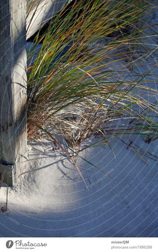 Nature Grass Sand Esthetic Baltic Sea Grassland Vacation photo Wayside Marram grass Vacation mood Baltic island