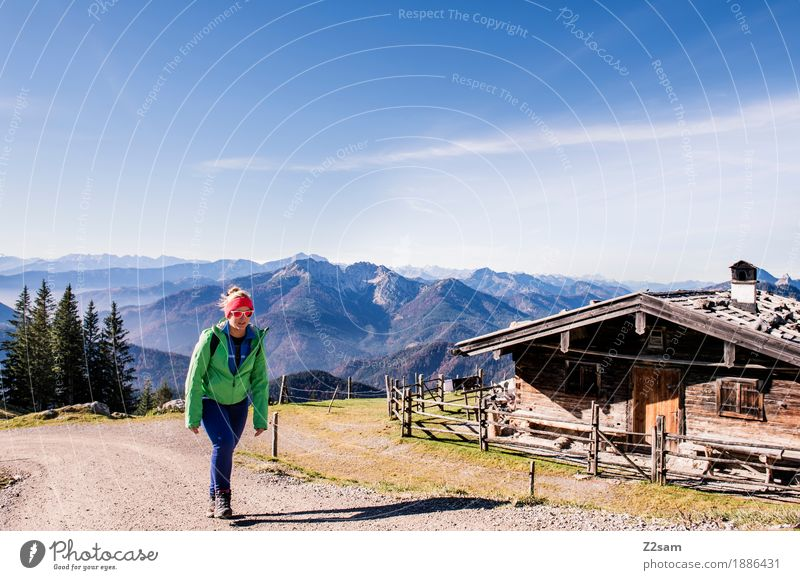 Is it much further? Adventure Mountain Hiking Sports Woman Adults 18 - 30 years Youth (Young adults) Environment Nature Landscape Autumn Beautiful weather Alps