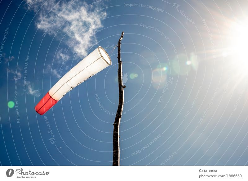 Orientation where the wind blows from launch site Paragliding Sky Sun Summer Beautiful weather Wind Branch Pole Wood Plastic Windsock To swing Wait Blue Red