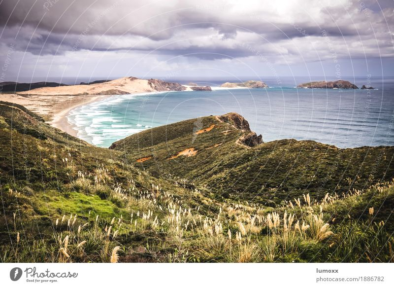 cape reinga Nature Landscape Sand Water Clouds Storm clouds Summer Bushes Waves Beach Bay Ocean Pacific Ocean Blue Yellow New Zealand North Island Colour photo