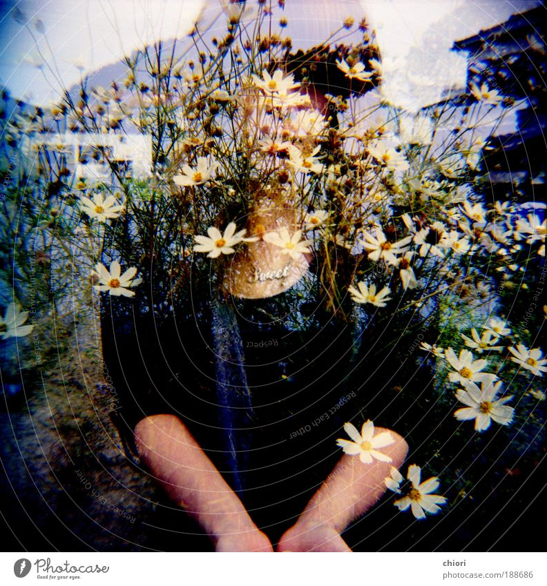 Her psychology Woman Youth (Young adults) Hand Lomography Winter Face Adults Life Autumn Work and employment Holga Art Trip Cool (slang) Gloomy 18 - 30 years