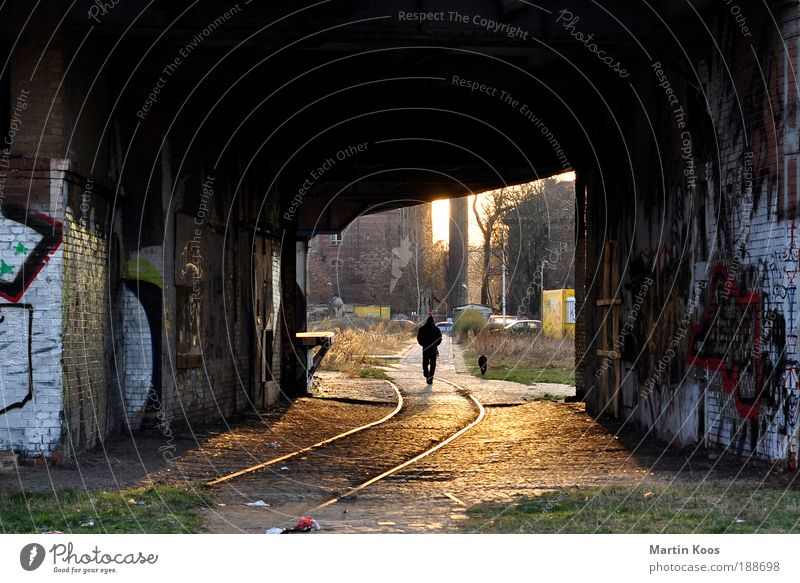 after daisy the sun, sebastian and dizzy Lifestyle Style Living or residing Human being 1 Subculture Town Bridge Tunnel Facade Dog Authentic Dirty Warmth