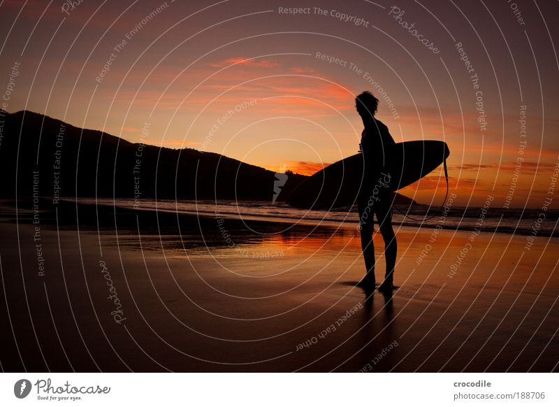 Endless buzzer Lifestyle Far-off places Beach Ocean Island Waves Sports Aquatics Surfing Surfer Surfboard Human being Masculine Young man Youth (Young adults) 1