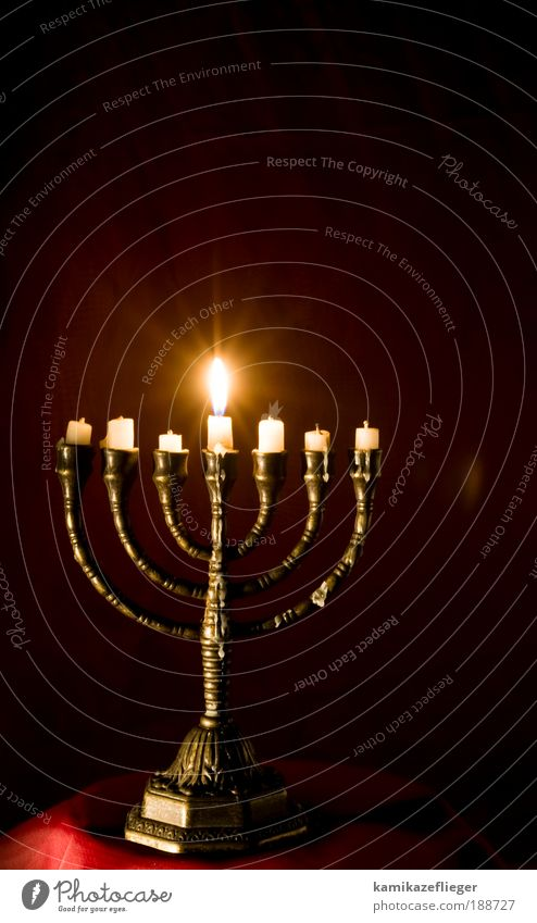 menorah Candle Candlelight Candle holder Candlelit ambience Religion and faith Judaism Emotions Moody Safety (feeling of) To console Mystic Belief Colour photo