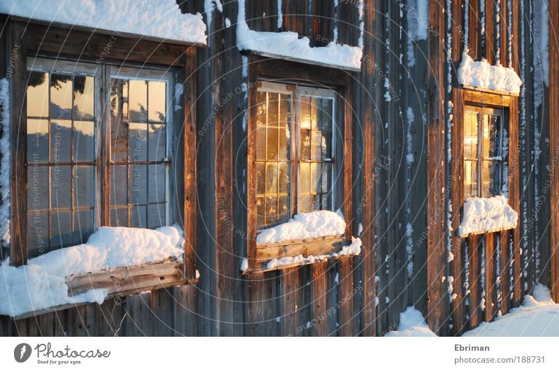 Golden Evening Harmonious Winter Snow Living or residing Flat (apartment) House (Residential Structure) Museum Culture Beautiful weather Ice Frost Village