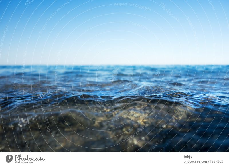 shallow Environment Nature Landscape Elements Water Sky Cloudless sky Horizon Beautiful weather Waves Coast North Sea Baltic Sea Ocean Blue Surface of water