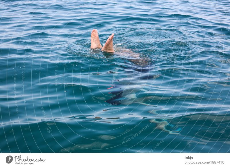 dive Body Feet 1 Human being Water Summer Beautiful weather Ocean Surface of water The deep Dive Blue Vacation & Travel Leisure and hobbies Barefoot Men`s feet