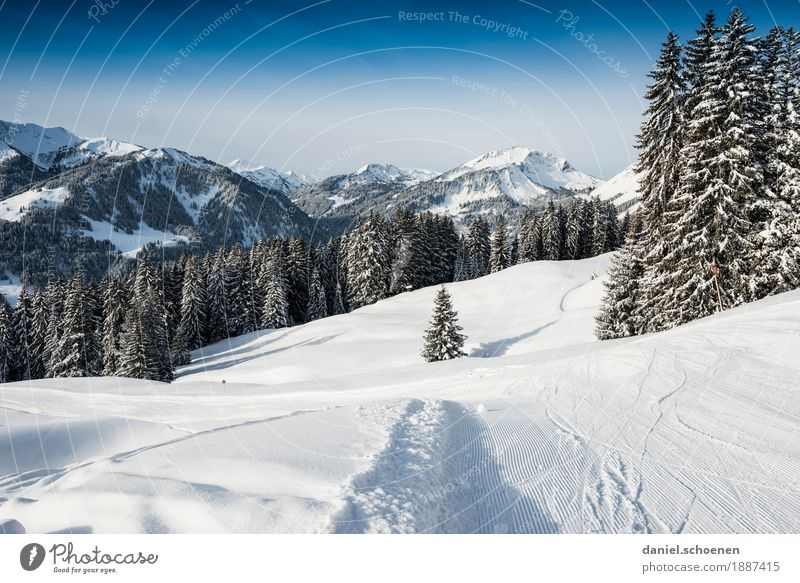 and down it goes Vacation & Travel Tourism Winter Snow Winter vacation Mountain Skiing Nature Landscape Cloudless sky Alps Snowcapped peak Blue White