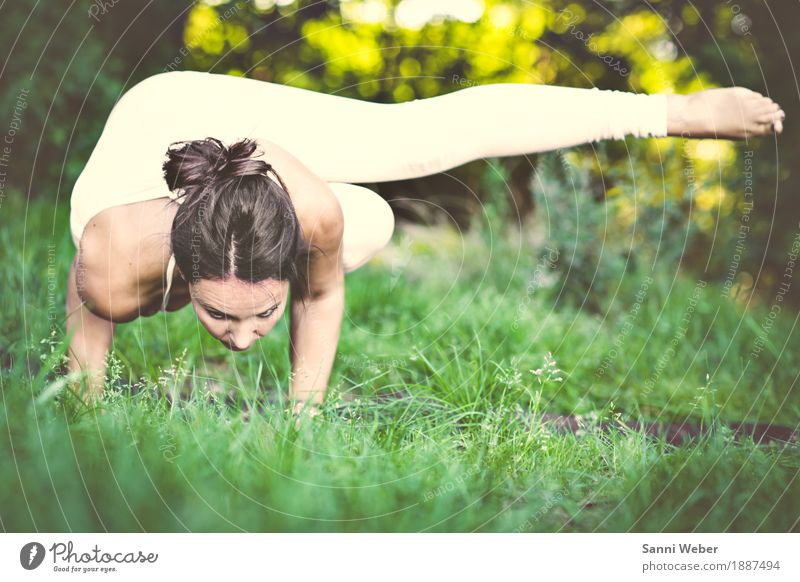 yoga pose Lifestyle Healthy Athletic Well-being Contentment Meditation Yoga Human being Feminine Woman Adults 1 30 - 45 years Nature Summer Beautiful weather