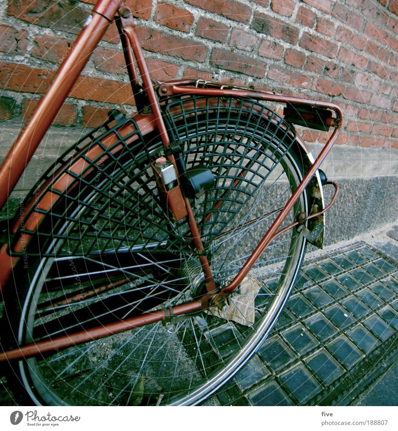 Red Dragon Copenhagen Denmark Wall (barrier) Wall (building) Means of transport Bicycle Driving Joy Wheel Ground Spokes Brick Colour photo Exterior shot Detail