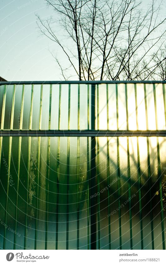 Tree Sun Waves Clarity Border Fence Transparent December Banner Real estate Screening Hoarding