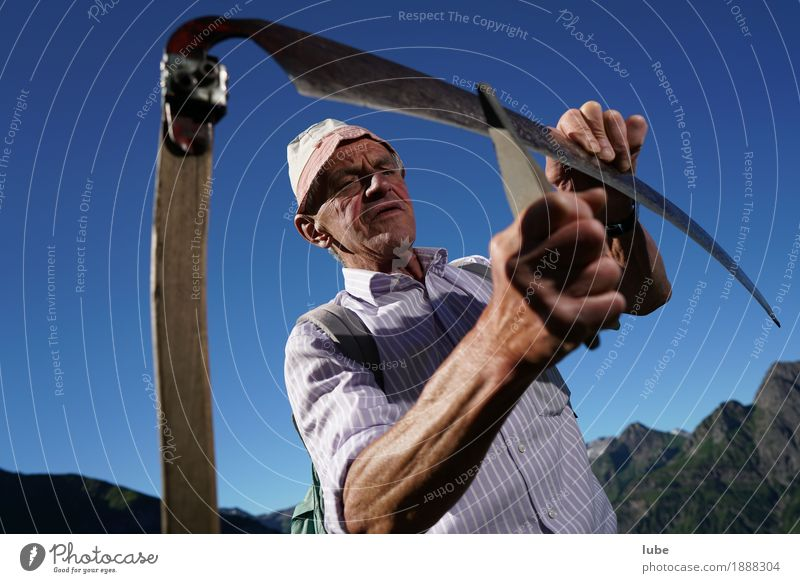 Sharp cutting Agriculture Forestry Tool Masculine Man Adults Male senior Senior citizen Work and employment Scythe The Grim Reaper Sharp thing sharpen peasant