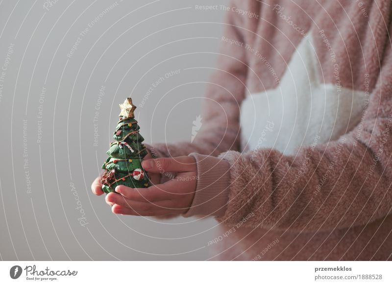 Girl wearing warm sweater holding Christmas tree figurine Human being Child Youth (Young adults) Christmas & Advent Tree Hand Lifestyle Feasts & Celebrations